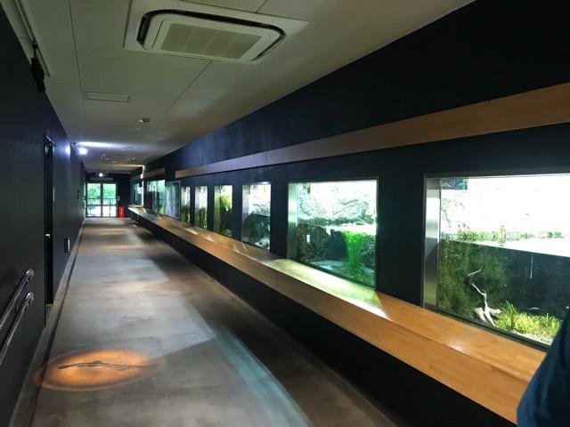 井の頭動物園-23
