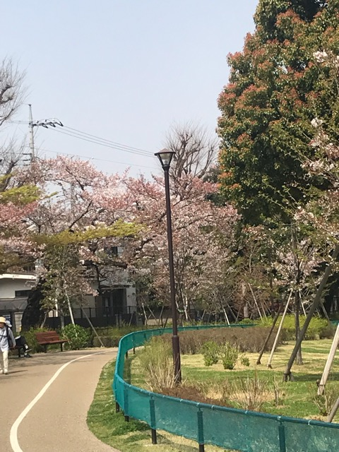 写真 2018-04-02 15 48 56