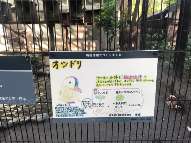 井の頭動物園-14