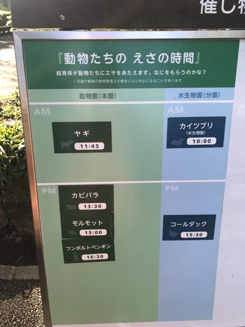 井の頭動物園-10